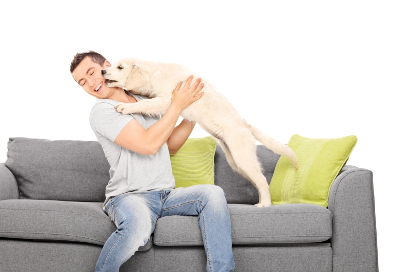 man on couch with puppy licking face